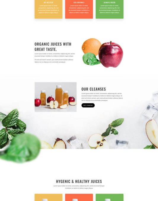 Website template: Juice Shop